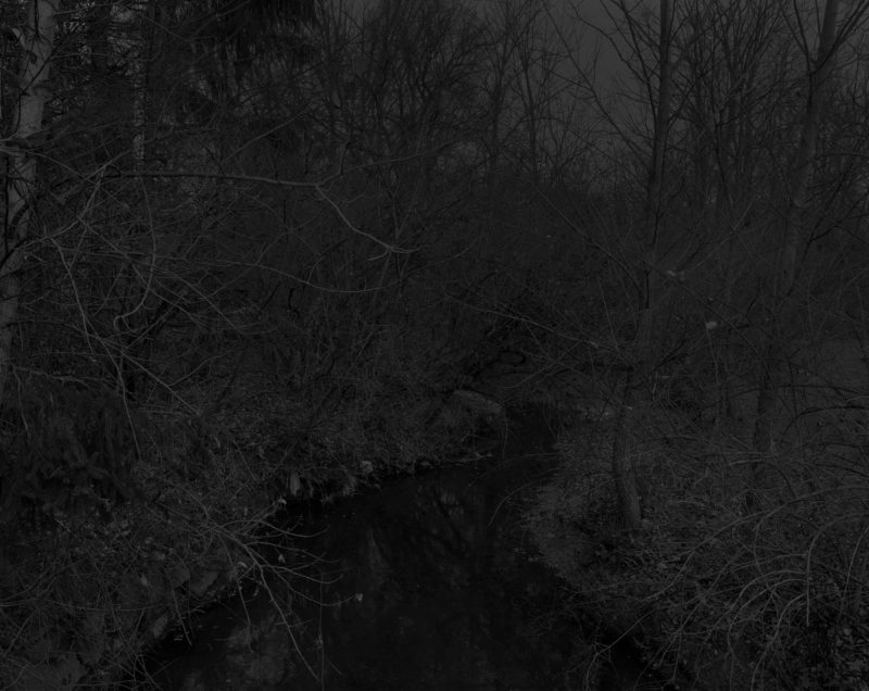 Dawoud Bey - Untitled #19 (Creek and Trees), from the series Night Coming Tenderly, Black, 2017