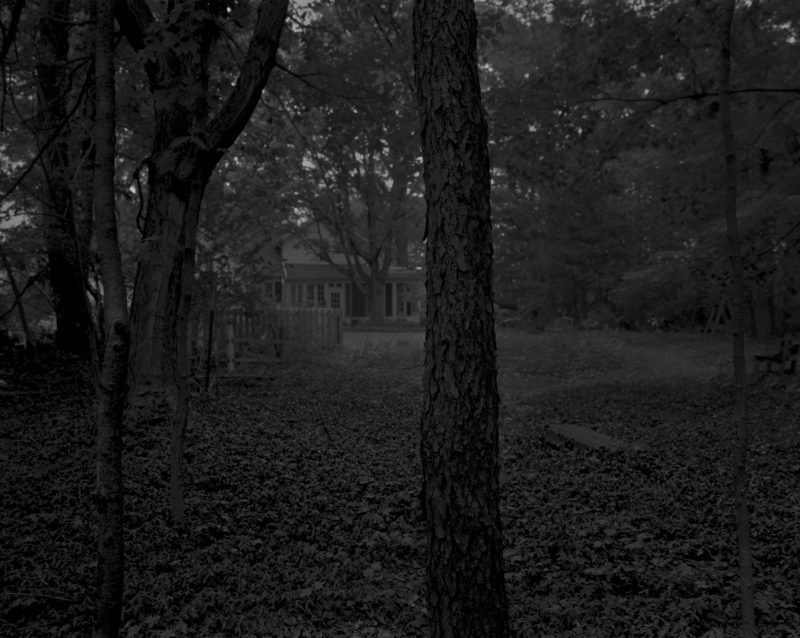 Dawoud Bey - Untitled #2 (Trees and Farmhouse), from the series Night Coming Tenderly, Black, 2017