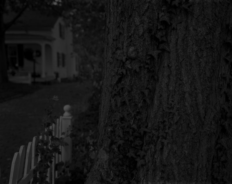 Dawoud Bey - Untitled #5 (Tree Trunk, Picket Fence, and House), from the series Night Coming Tenderly, Black, 2017