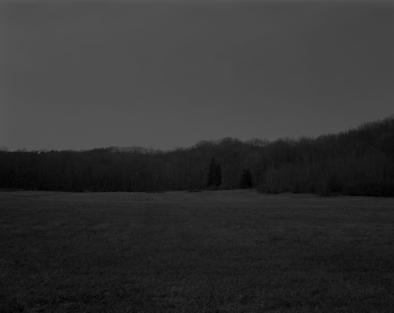 Dawoud Bey - Untitled #9 (The Field), from the series Night Coming Tenderly, Black, 2017